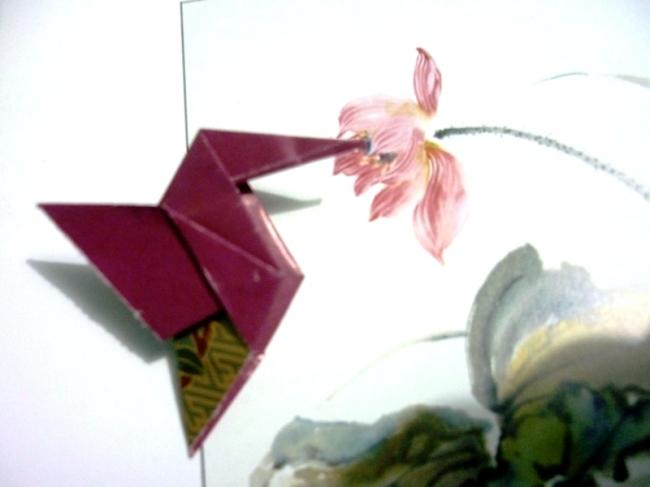 easy_hummingbird