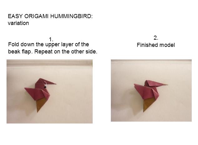 hummingbird_variation2